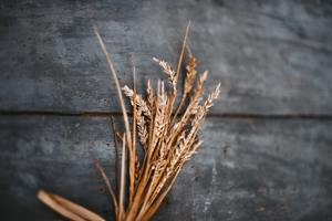Whole Wheat on Wood- Photo by Gaelle Marcel on Unsplash