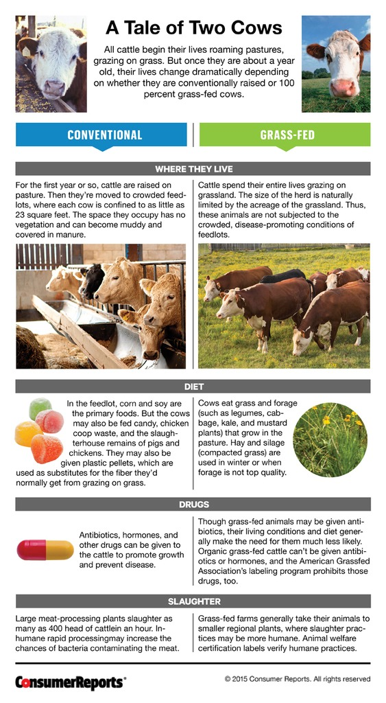 Consumer Reports A Tale of Two Cows