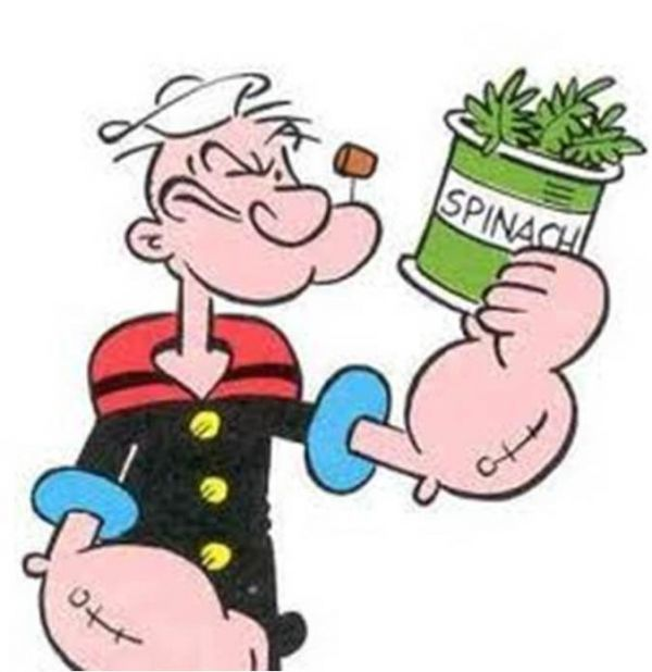 This image has an empty alt attribute; its file name is Popeye-and-Spinach.jpg