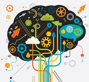 The Brain is Key