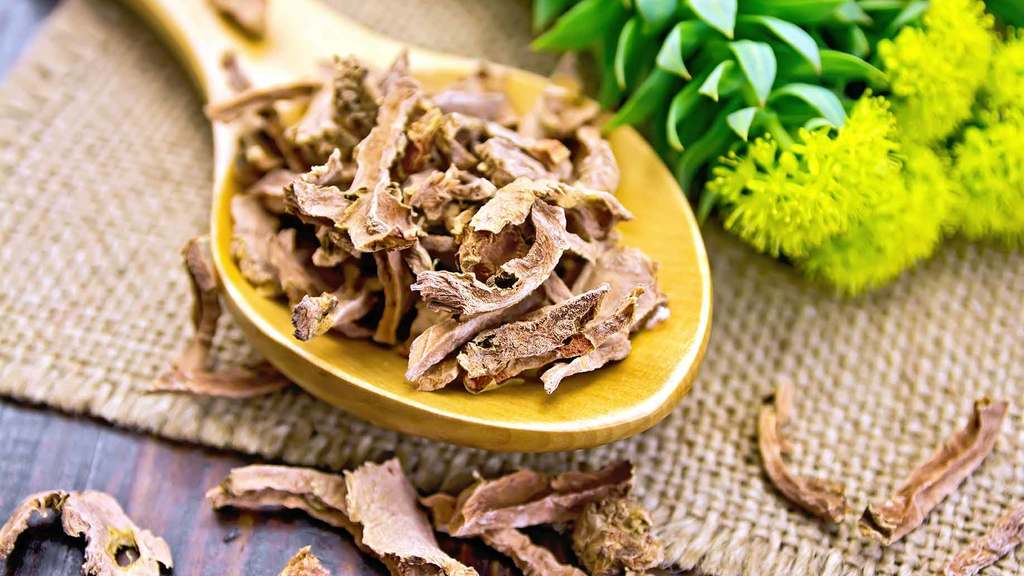 Rhodiola - dried and flowering