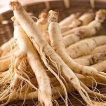 eleuthero roots